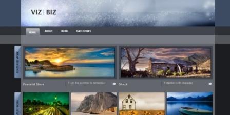 Премиум тема для WorPress для портфолио. viz-biz-portfolio-wordpress-themes